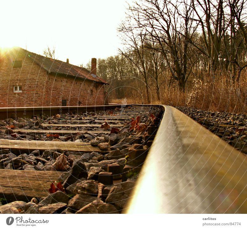 Nebengleis Nebenstrecke unökonomisch Gleise Umwelt Rost Recycling Sträucher Eisenbahn rostfrei Lebenslauf Wolken Wildnis Bahnhof Kurvenüberhöhung Kurveneigung