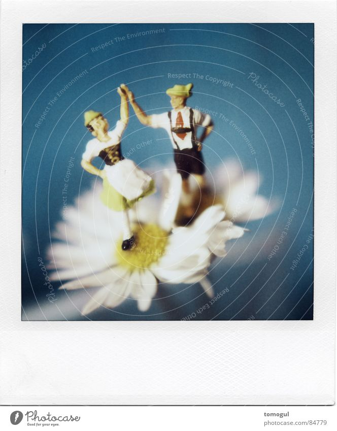 Bet you Look Good on the Dance Floor Tracht Blume blau Freude Polaroid Blüte Glück Tanzen Zusammensein Tanzveranstaltung Fröhlichkeit Lebensfreude Musik Hut