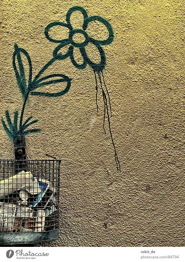 Hatschii II... Bahnunterführung Wachstum Müll Eimer Müllbehälter Papierkorb Korb Wand Bla Blume Stengel Blüte sprühen Löwenzahn rieseln Tagger Blühend