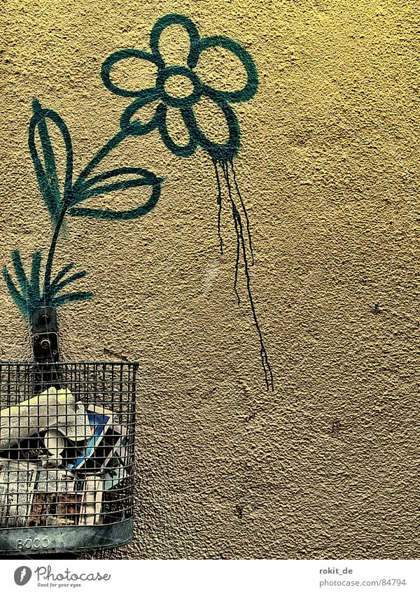 Hatschii II... Blume Farbe Wand Blüte Graffiti Metall laufen Wachstum Tropfen Müll Vergänglichkeit Stengel Blühend Löwenzahn Blumenstrauß Bahnhof