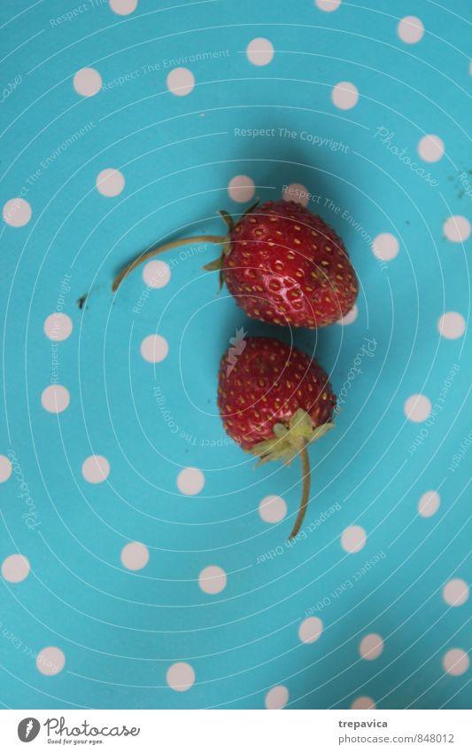 Erdbeeren Natur blau rot Liebe natürlich klein Gesundheit Lebensmittel Freundschaft Zusammensein Lifestyle Frucht frisch Fröhlichkeit ästhetisch Ernährung
