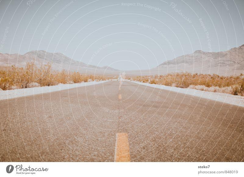 Road Trip Wolkenloser Himmel Sommer Schönes Wetter Sträucher Berge u. Gebirge Wüste Straße frei Unendlichkeit trist trocken blau braun gelb Einsamkeit entdecken