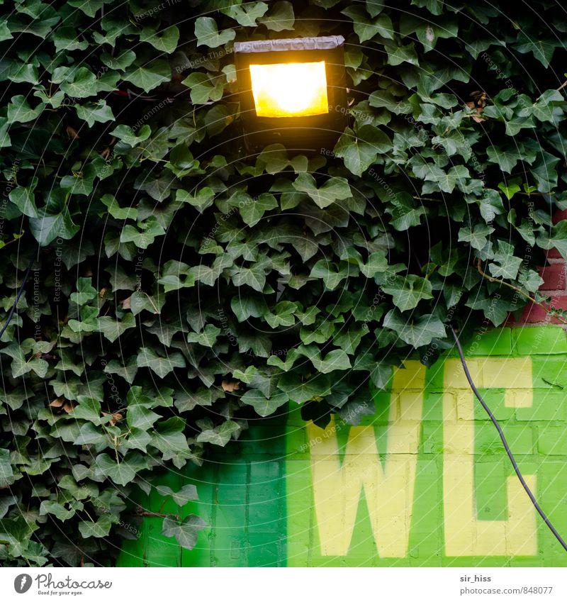 Einmal austreten bitte! grün gelb Sport Lampe Feste & Feiern Garten gehen Gesundheitswesen Business dreckig Schriftzeichen Hinweisschild Sauberkeit Baustelle