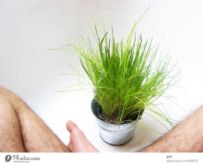 Es ist Sommer ! grün Badewanne Schnittlauch planen Gemüse water white