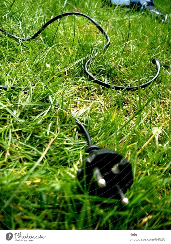 zwischen 2welten Natur alt grün schön Sommer Wolken Einsamkeit schwarz Tod dunkel Wiese Gras Frühling Haare & Frisuren Traurigkeit Wind