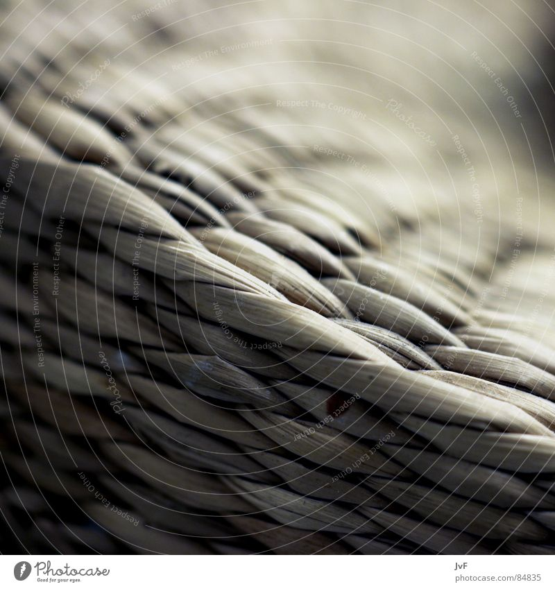 [langeweile im bad] Natur trist nah Langeweile bleich Korb Gully netzartig gewebt Bast Korbmacher