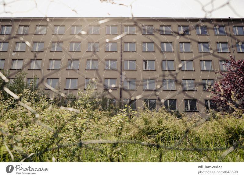 Seeseite eines Blocks des Prora-Komplexes Ferien & Urlaub & Reisen Sommer Sonne Meer Haus Strand gelb Architektur Gebäude grau braun Deutschland gold Tourismus
