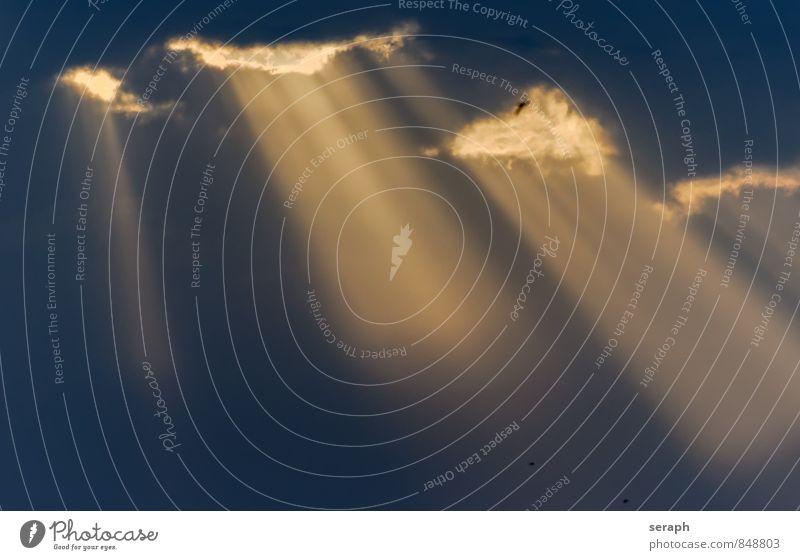 Himmelstor Himmel (Jenseits) Licht Lichtstrahl rein Reinheit Sonne Sonnenstrahlen Sonnenlicht himmlisch Paradies geheimnisvoll Religion & Glaube Wolken Natur