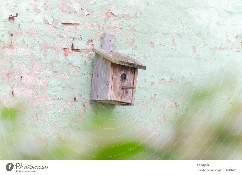 Nistkasten Natur Wand Vogel Schutz Backstein Eingang gemalt Kasten Kiste heimwärts verwittert bemalt Nest Tarnung Ornithologie Hauseingang