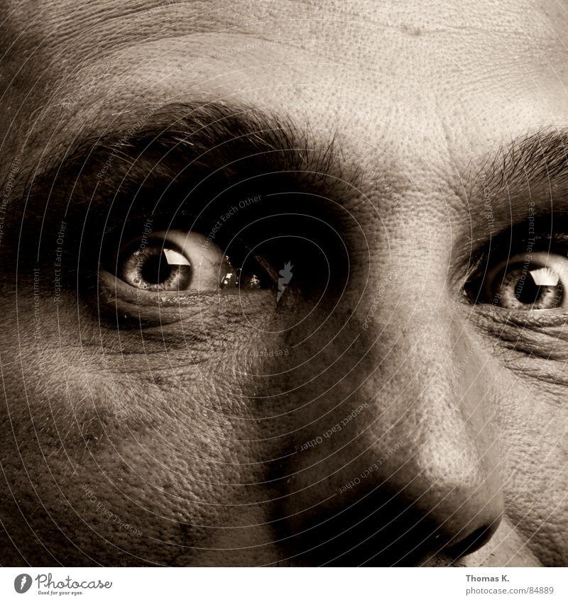 Mr. H. Porträt Pupille Wahnsinn Pore Seele fixieren stechend Freak Schock Blick Gänsehaut lautstark Aussehen anschaulich Glubschauge Regenbogenhaut verrückt