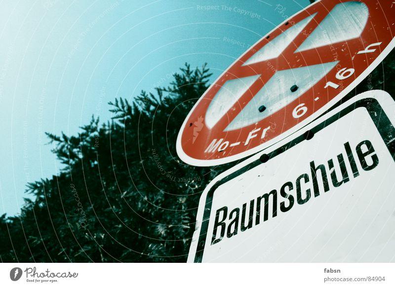 BAUMSCHULE Halteverbot Baumschule Verkehr Verkehrsschild Parkverbot ausgebleicht rot Schrott blau-rot Himmel Hinweisschild Baumstruktur Umwelt