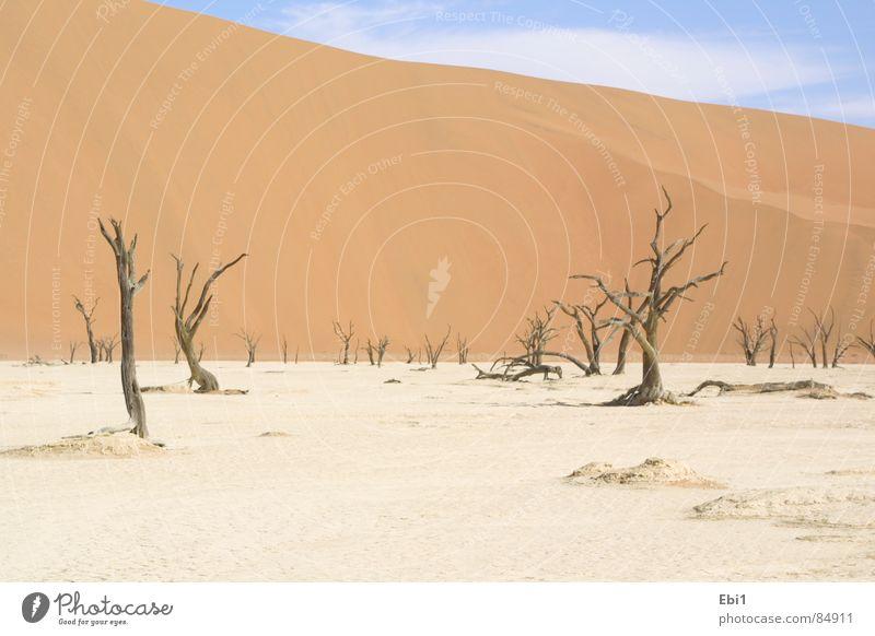 Namibische Wüste 1 Sommer Ferien & Urlaub & Reisen Wärme Afrika Physik Dürre Ödland Namibia Überlebenstraining