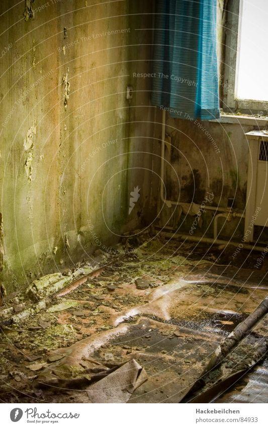 wohnst du noch immernoch... grün Fenster Wand grau Raum dreckig Industrie Häusliches Leben Vorhang Ekel Pilz Schimmelpilze fade