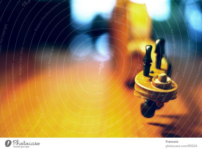 Geige 4 Musik Konzert Schnecke Musikinstrument Veilchengewächse Orchester Saiteninstrumente Musiker Cello Bratsche