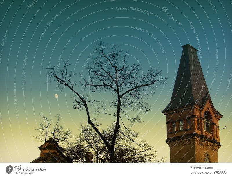 mit allice im wunderland grün Sonne Haus ruhig Ferne Fenster Straße kalt Herbst oben Berlin Horizont Stern frisch Dach Turm