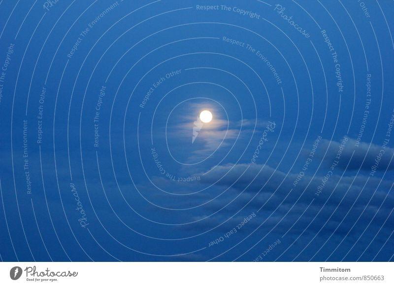 Hochzeitsmond über Schloss Kapfenburg. Natur blau Sommer weiß Wolken Gefühle Beleuchtung ästhetisch Lebensfreude einfach Mond Nachthimmel Mondschein Vollmond