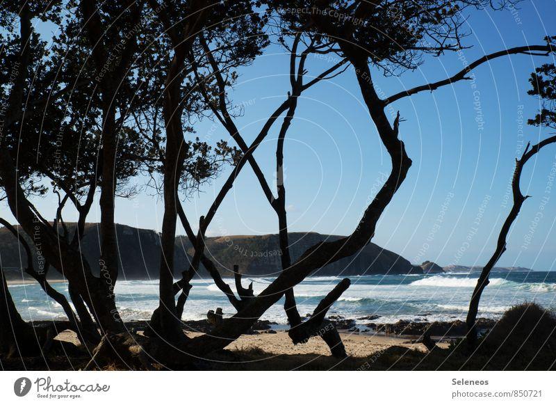 Wild Coast Himmel Natur Ferien & Urlaub & Reisen Sommer Sonne Erholung Meer Strand Ferne Umwelt Küste natürlich Freiheit Horizont Wellen Tourismus