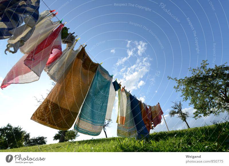 Trockenzone blau Sonne Freude Stil Glück Garten frisch elegant Kraft Fröhlichkeit Seil Freundlichkeit Mut Euphorie drehen Wäsche waschen