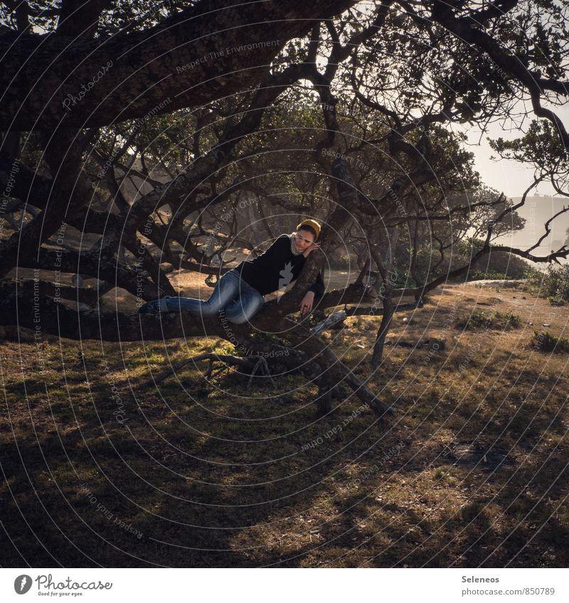 Lieblingsplatz Mensch Frau Natur Ferien & Urlaub & Reisen Pflanze Baum Erholung Landschaft Ferne Umwelt Erwachsene feminin Küste Freiheit Ausflug genießen