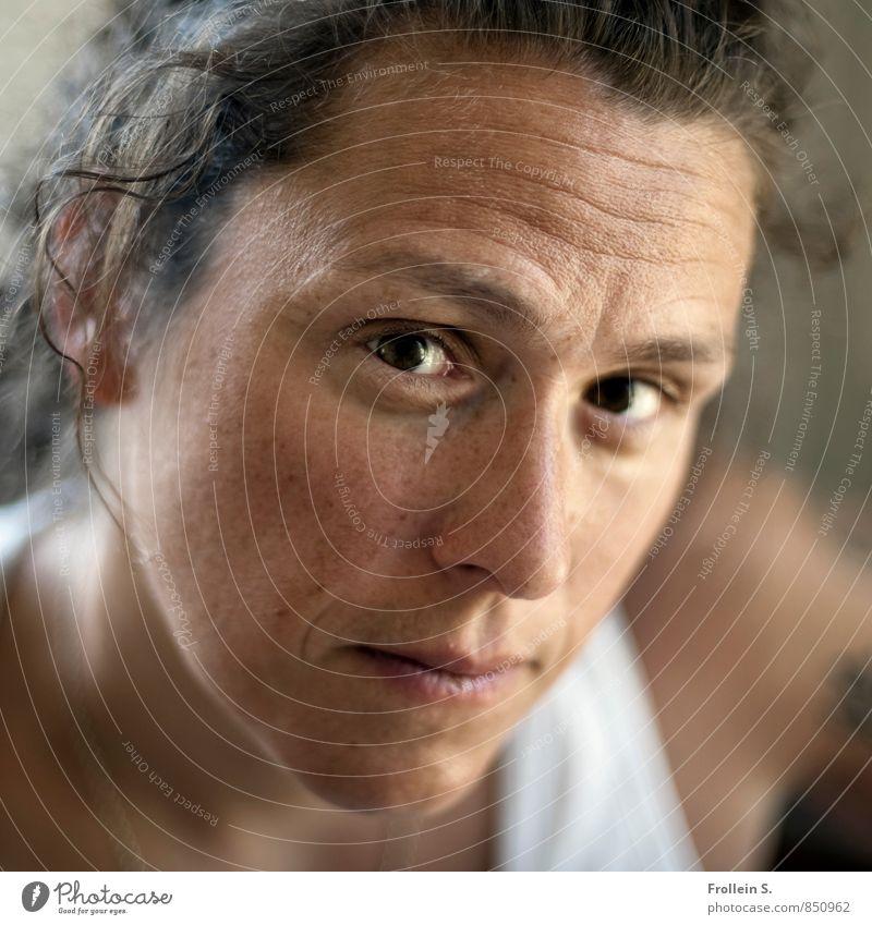 Blick Mensch Frau Jugendliche Junge Frau Gesicht Erwachsene Auge feminin Kopf offen authentisch Kommunizieren Hautfalten Kontakt Konzentration Locken