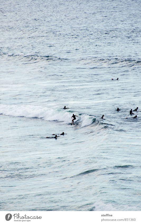 Surfin' USA Natur Wasser Sonnenaufgang Sonnenuntergang Schönes Wetter Wellen Meer Pazifik San Francisco Sport Surfen Surfer Farbfoto Außenaufnahme
