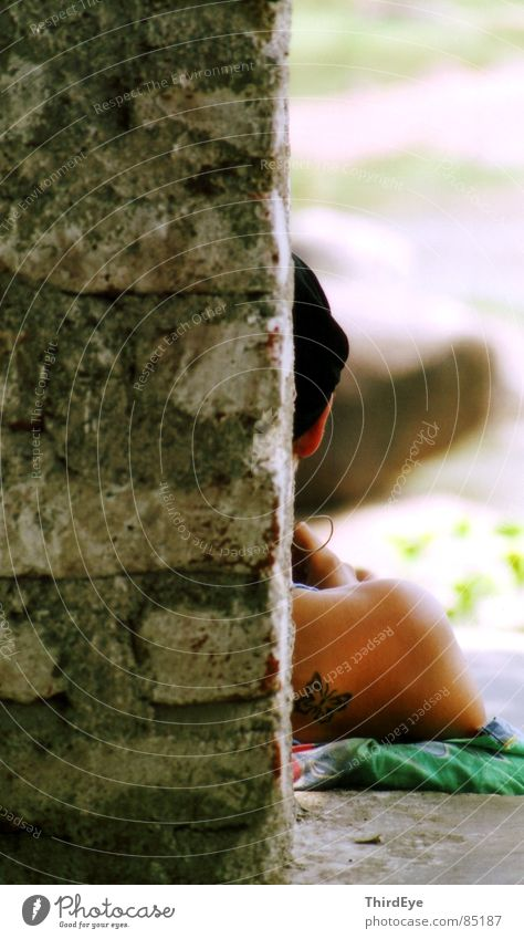 Papillon Mauer hart Backstein Schulter Physik Schmetterling ruhig Ferien & Urlaub & Reisen Pause Sommer Indien Asien Frau Kopfhörer Erholung Strukturen & Formen