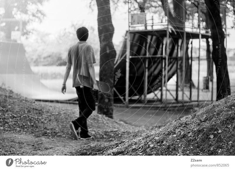 THAT´S IT, THAT´S ALL Lifestyle Stil Skateboarding Halfpipe maskulin Junger Mann Jugendliche 1 Mensch 18-30 Jahre Erwachsene Landschaft Sonne Sommer