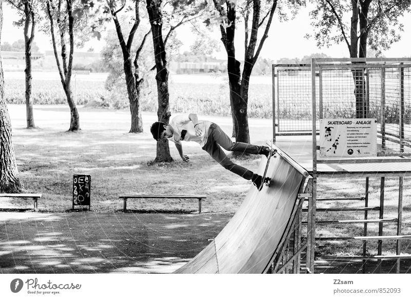 Hans Lifestyle elegant Skateboarding Halfpipe maskulin Junger Mann Jugendliche 18-30 Jahre Erwachsene Natur Landschaft Sommer Schönes Wetter Baum Sträucher