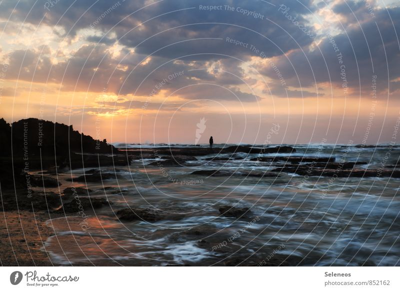 Guten Morgen Wochenende Mensch Himmel Natur Ferien & Urlaub & Reisen Wasser Sommer Sonne Meer Landschaft Wolken Strand Ferne Umwelt Küste natürlich Freiheit