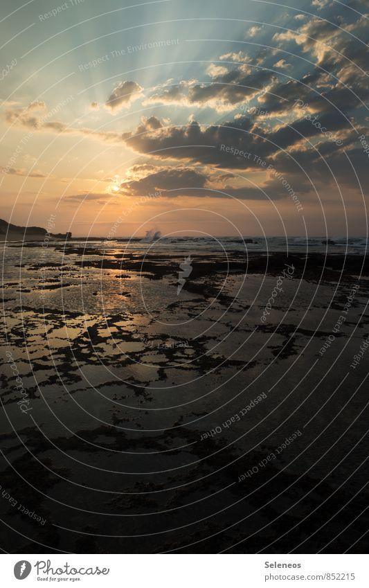 Ebbe am Morgen Himmel Natur Ferien & Urlaub & Reisen Sommer Wasser Sonne Meer Landschaft Wolken Ferne Strand Umwelt natürlich Küste Freiheit Horizont