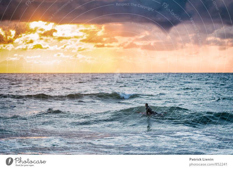 Surfers Paradise Lifestyle Stil harmonisch Wohlgefühl Freizeit & Hobby Ferien & Urlaub & Reisen Abenteuer Sport Wassersport Sportler Umwelt Natur Landschaft
