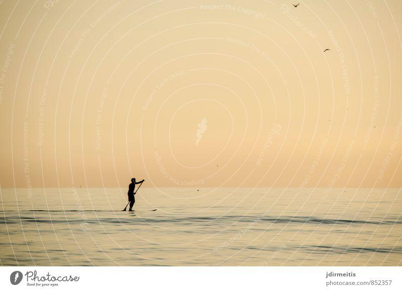 Stand-Up-Paddling Mensch Natur Ferien & Urlaub & Reisen Wasser Sommer Meer Erholung Landschaft Freude Strand Küste Sport Freiheit Freizeit & Hobby maskulin