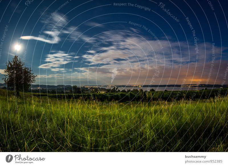 Bodensee im Mondlicht Ferien & Urlaub & Reisen Tourismus Ausflug Städtereise Sommer Sommerurlaub Natur Landschaft Wasser Wolken Schönes Wetter Baum Gras Wiese