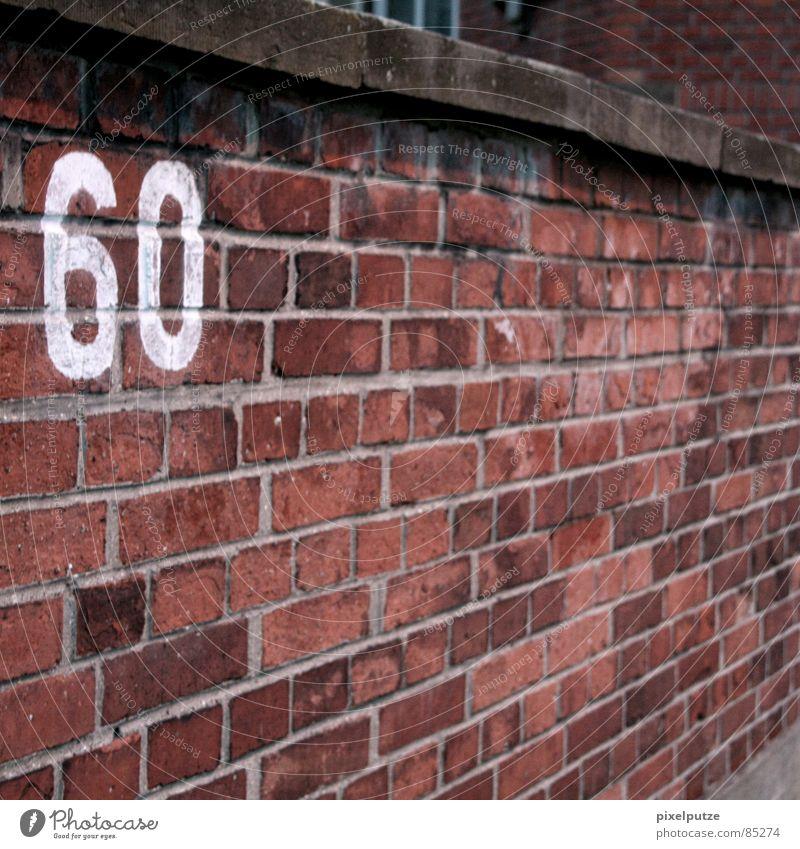 60 leer Ziffern & Zahlen Typographie Beschriftung Hausnummer Parkplatz Jubiläum Mauer Backstein massiv befestigen Stabilität Wohnung rot Quadrat Steinmauer