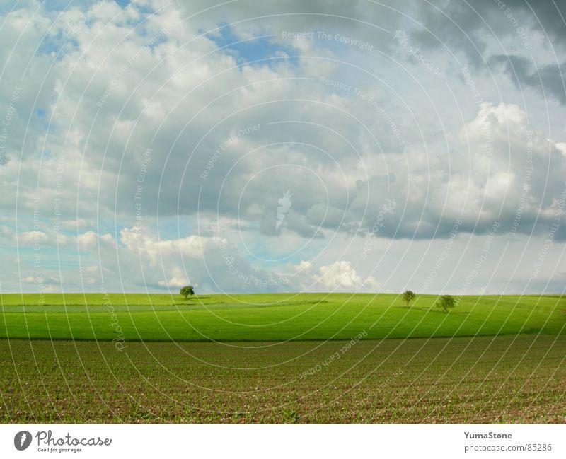 unter Wolken, über Erde Wolkenhimmel Bayern Feld Landwirtschaft Ackerbau Landschaft Natur Regen Himmel