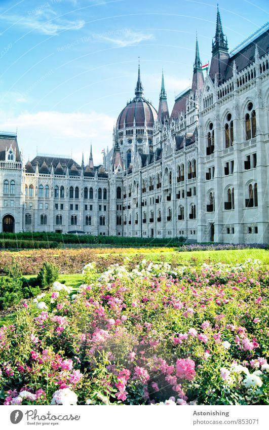 Parlament in Budapest Natur Landschaft Pflanze Himmel Wolken Sommer Wetter Schönes Wetter Blume Gras Ungarn Stadt Hauptstadt Park Platz Bauwerk Gebäude