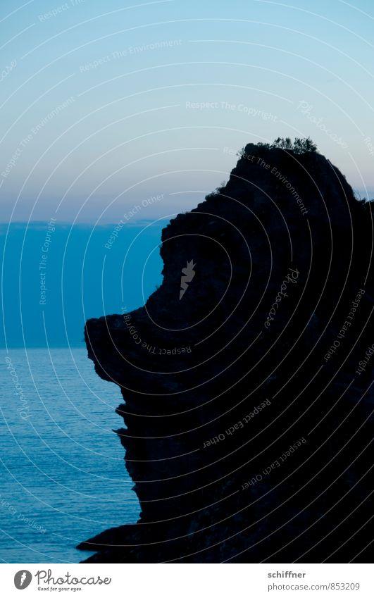 Ich? entrüstet? Mensch blau Meer schwarz Küste außergewöhnlich Kopf Felsen Wellen Nase nerdig Gesteinsformationen