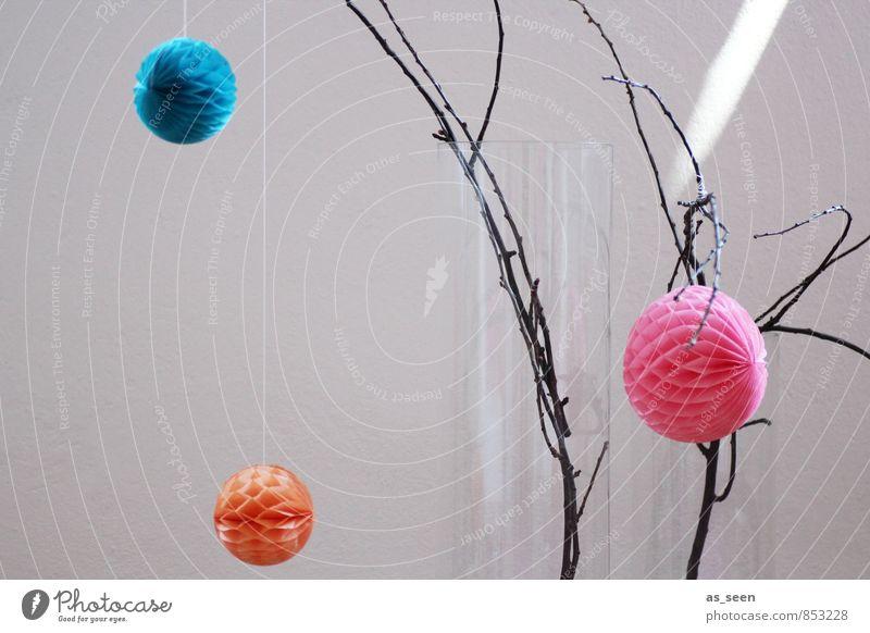 Deko elegant Stil Design Häusliches Leben Wohnung Innenarchitektur Dekoration & Verzierung Ast hängen ästhetisch trendy rund orange rosa türkis Farbe