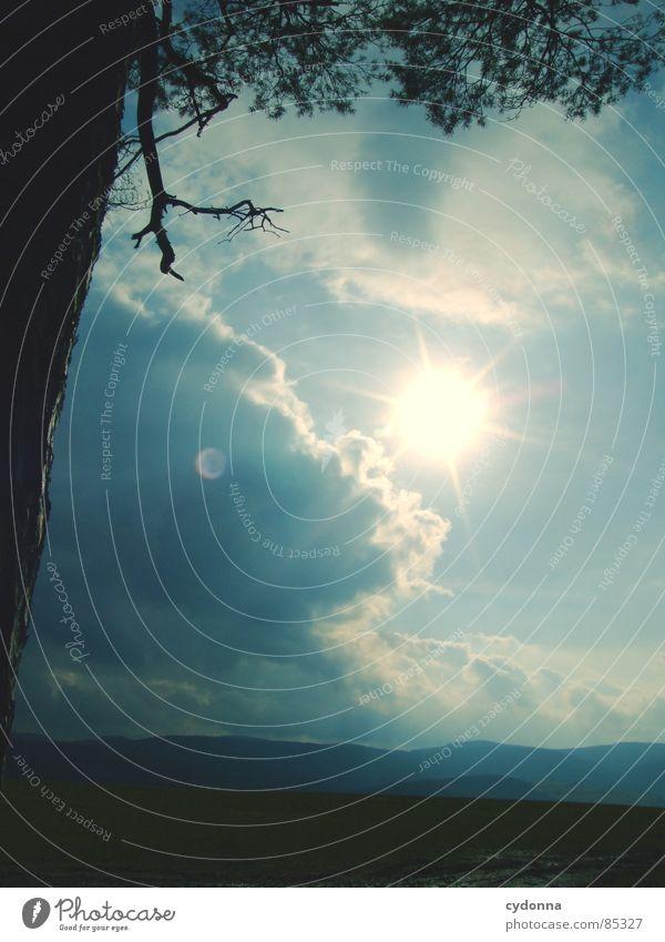 Sonnendurchbruch Himmel Natur schön Sonne Landschaft Wolken Freude Berge u. Gebirge Wärme Leben Gefühle Beleuchtung Feld Ast Schönes Wetter Landwirtschaft