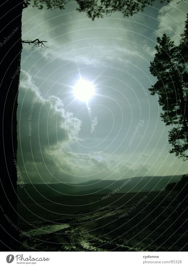 Sonnendurchbruch I intensiv Licht blenden Färbung Lichtbrechung aufwachen Himmel wahrnehmen schön Baumstamm Gefühle Feld Landwirtschaft Wolken Pfütze Schlamm