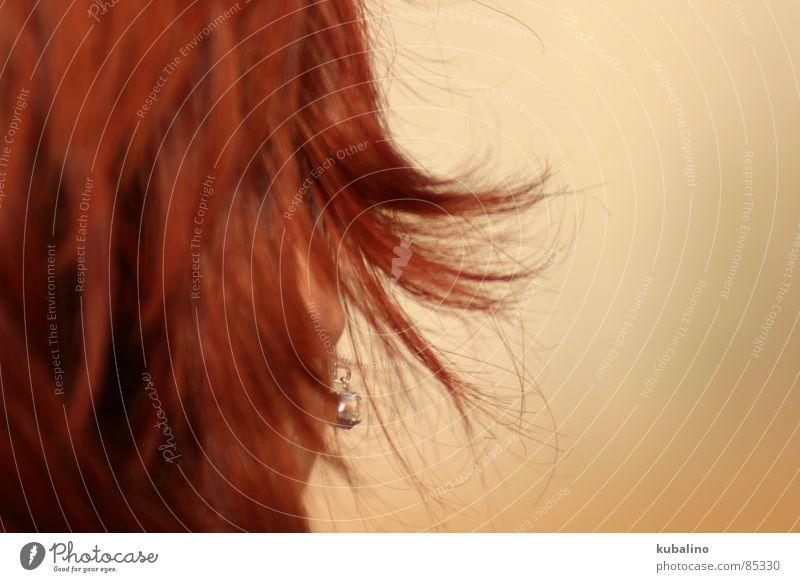 kämmbar rot Kopf Haare & Frisuren Ohr Medien Ohrringe Haarpflege