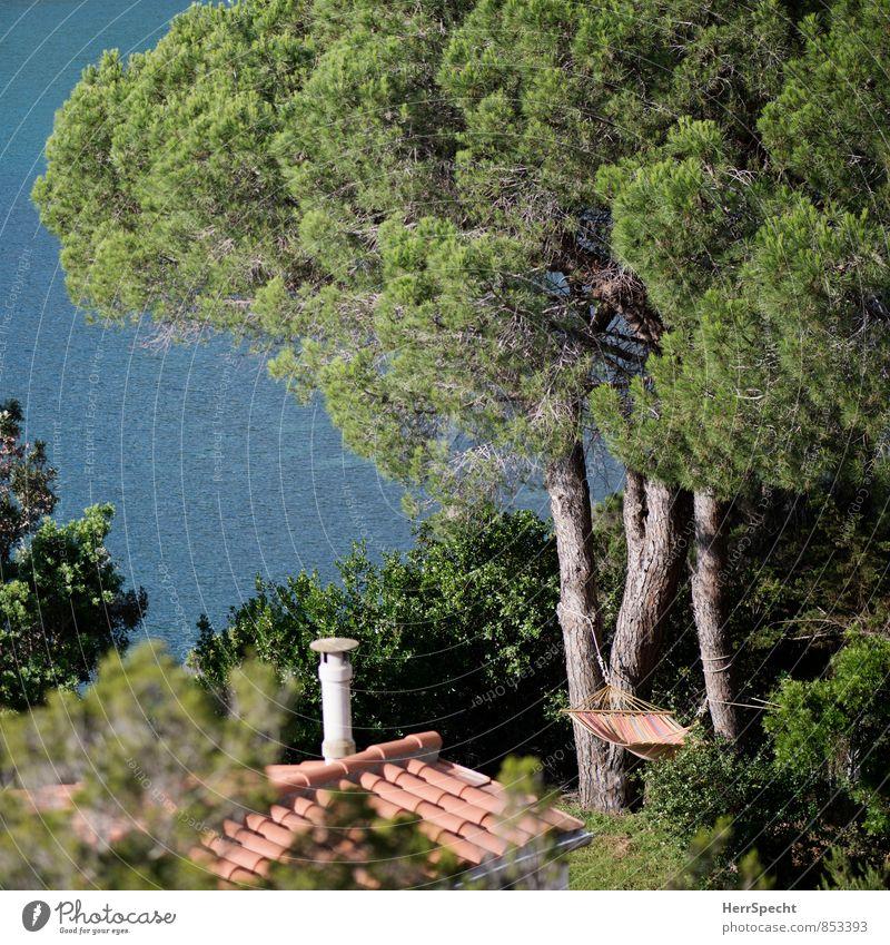 Mal abhängen Ferien & Urlaub & Reisen Tourismus Ferne Sommer Sommerurlaub Sonne Meer Häusliches Leben Haus Traumhaus Umwelt Natur Landschaft Schönes Wetter