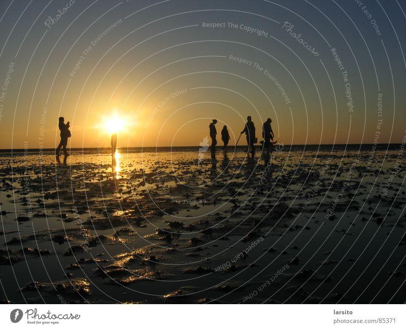watt is dat? dat is watt! Sonnenuntergang Gegenlicht Abend Strand Küste Menschengruppe Schifffahrt Wattenmeer Himmel Wasser Abenddämmerung