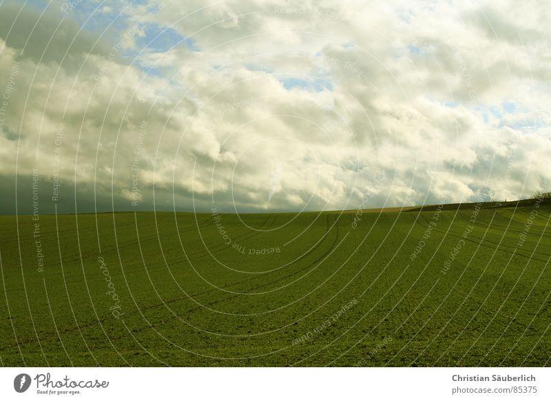 The Green Mile V1 Himmel grün Wolken Wiese Gras Landschaft Luft Feld Rasen Weide Ackerbau Paradies Planet Medien Auftrag Grünfläche