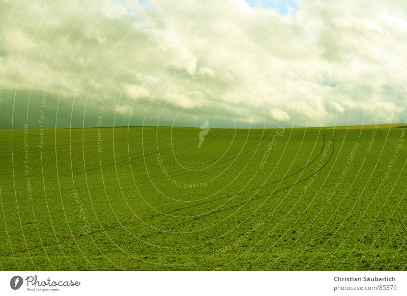 The Green Mile V2 Himmel grün Wolken Wiese Gras Landschaft Luft Feld Rasen Weide Ackerbau Paradies Planet Auftrag Grünfläche