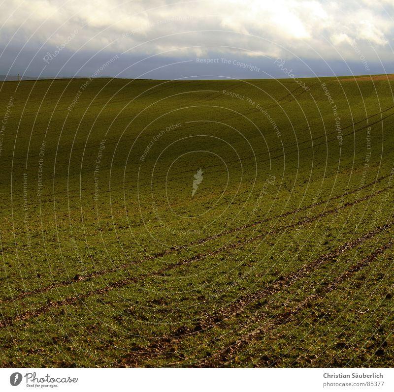 The Green Mile V3 Himmel grün Wolken Wiese Gras Landschaft Luft Feld Rasen Weide Ackerbau Paradies Planet Auftrag Grünfläche