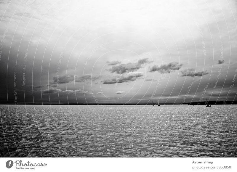 Neusiedler See Umwelt Natur Luft Wasser Himmel Wolkenloser Himmel Gewitterwolken Horizont Sommer Wetter Bootsfahrt Sportboot Segelboot grau schwarz weiß