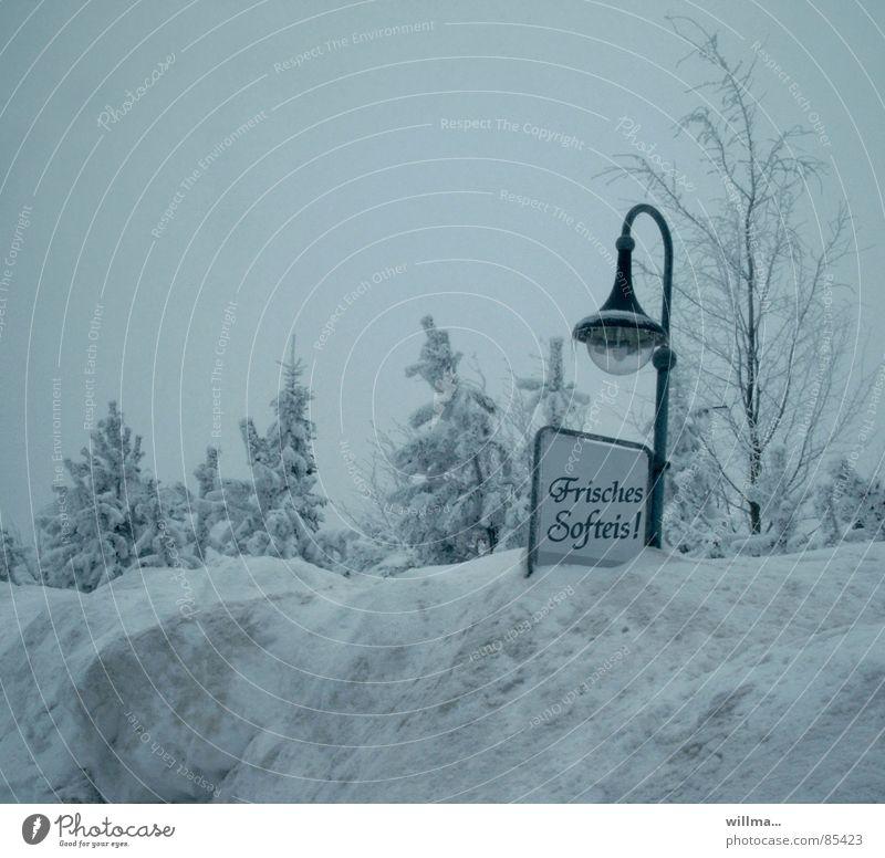 software - heute kostenlos blau Winter kalt Schnee lustig Eis Schilder & Markierungen frisch Frost Straßenbeleuchtung Werbung Handel Humor Softeis