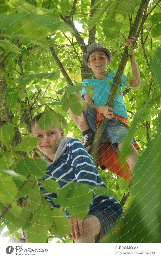 Jungs schauen durch Blätter vom Baum herunter Ausflug Abenteuer Freiheit Klettern Bergsteigen Mensch maskulin Kind Junge Geschwister Bruder Freundschaft 2