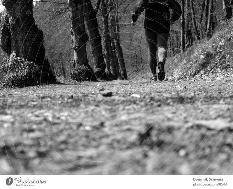 gut gelaufen Wald Jogger Joggen Blatt Baum Mann Schuhe Wade Sport Wege & Pfade walking Walker Beine Muskulatur rennen Spurt Schwarzweißfoto